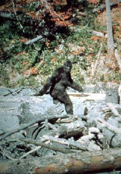 Footprints & DNA – Researchers present the latest on Bigfoot this weekend