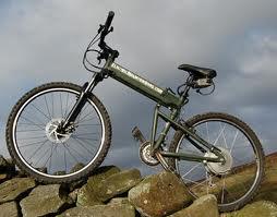 Wondering what kind of bike to buy? Here's a breakdown of mountain vs. hybrid vs. road bike