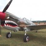 An example of a P40 WWII plane.