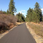 There are few trees on the Latah Trail which provides open views of rolling farmland and pockets of forest.