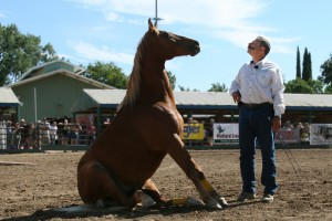 David Lichman faces one of his horses, as it sits in a dirt arena.
