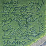 The 2013 Clearwater Corn Maze was to feature the Lewiston Roundup's bucking horse logo. Adverse growing conditions and storms have cancelled the seasonal attraction.