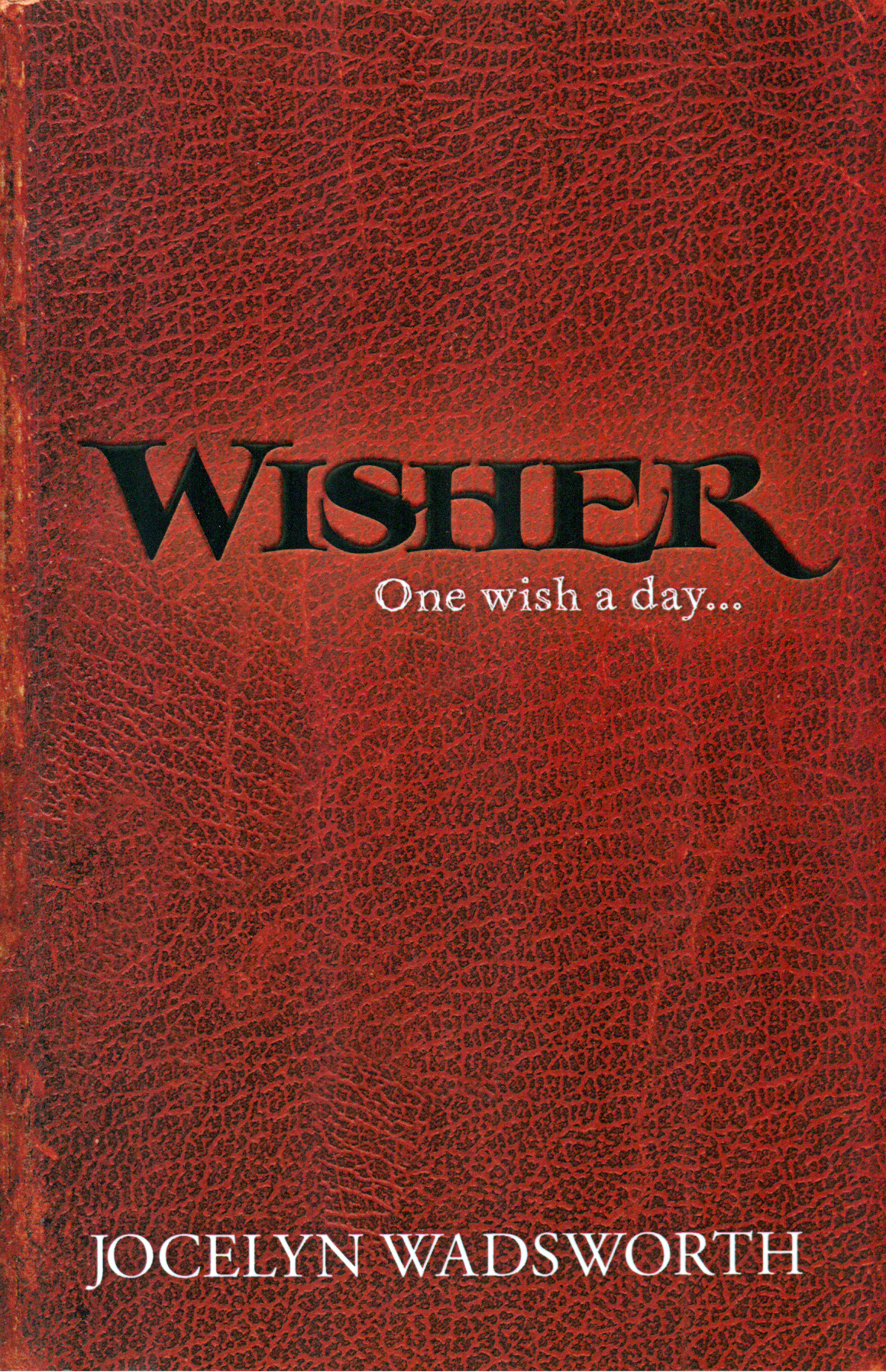 """Wisher, One Wish a Day"" explores through young adult fiction what would happen if your wishes really came true."