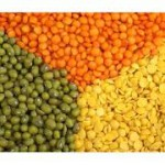 Lentils are one of the highest sources of folic acid in nature.