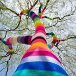 A yarn bombed tree is an example of the current popularity of yarn bombing.