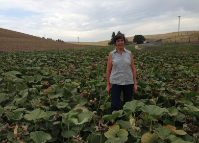 Polly Dennler stands in a field full of pumpkins.