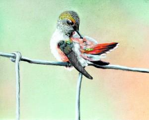 This painting of a bird preening by Linda Shewey is part of an exhibit at Artisans at the Dahmen Barn through November.