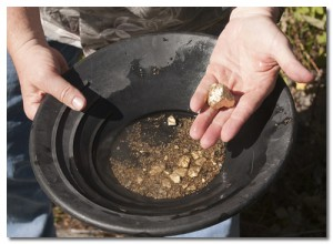 Gold panning can still be done in many local areas.