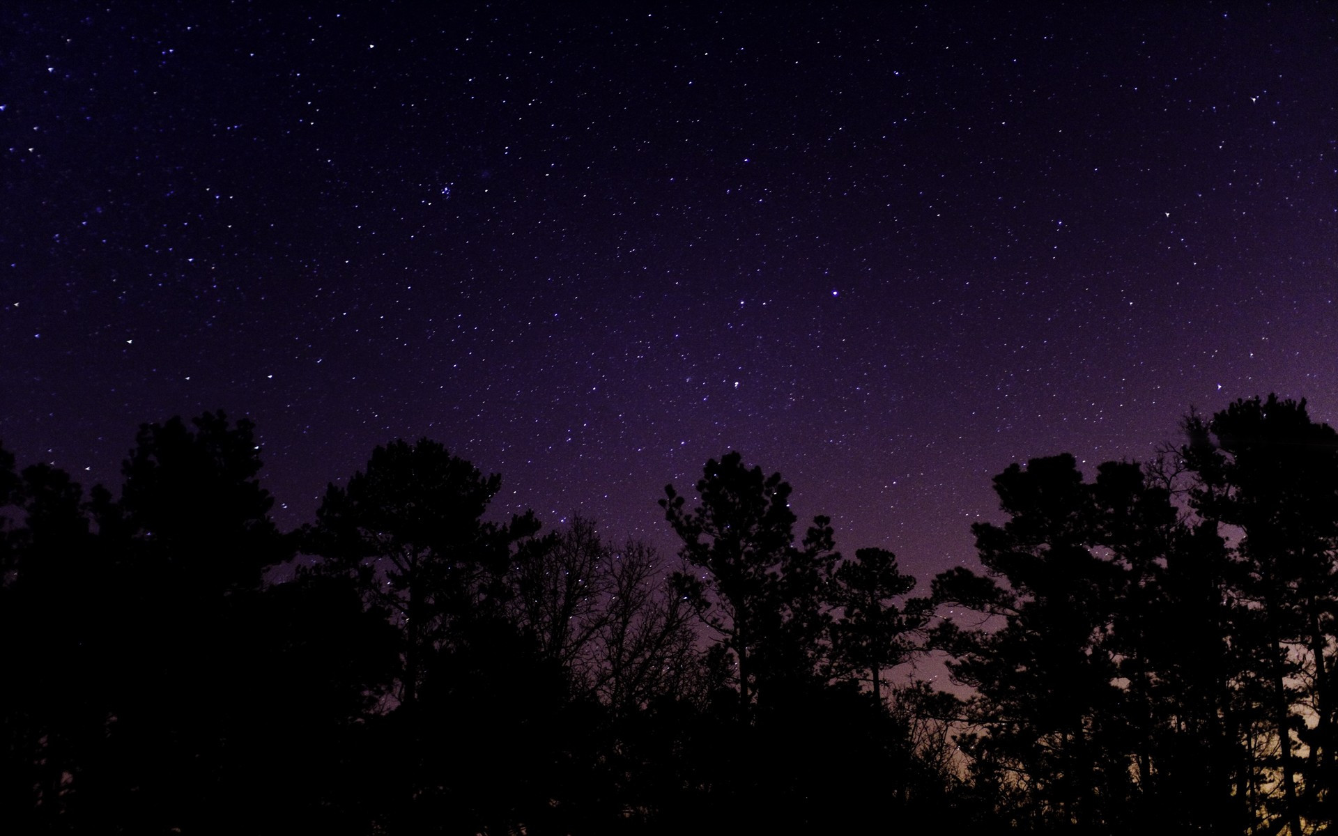 Summer dare: Sleep under the stars: a truly stellar