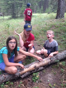 360_daytrip_Jasmine, Grace Powell and Brenden Powell decide scratches on a log mean Bigfoot is near