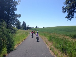360_latahtrail riding through the fields and trees of the Palouse