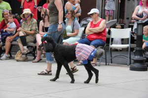 A contestant shows a flare for patriotic bloomers in the 2014 Moscow Mutt Strut. (Photo Linda Pall)