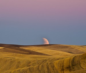A photo of the Sept. 25 blood moon rising over the Palouse by Francisco B. Aguilar.