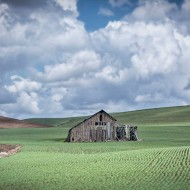 Recording the rolling hills: The Palouse shines as a photography hot spot
