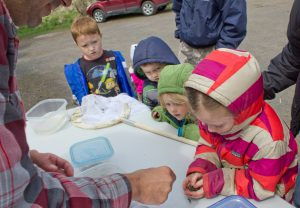360_outdoor fun day_kids handling a frog from the amphibian catch and release