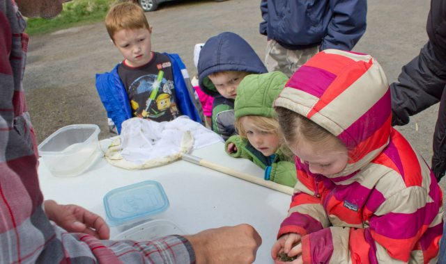 Yeastmode: Catch wild yeast — and more — at Outdoor Fun Day