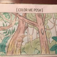 April 21: Color Me Posh – Sandy Gordon