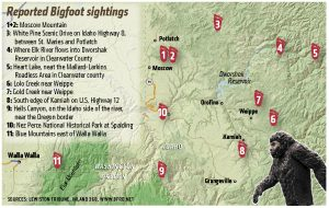 Bigfoot-sightings