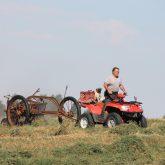 Raking hay his own way