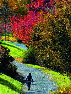 A visitor to the University of Idaho Arboretum and Botanical Garden strolls through the fall colors Friday afternoon. The weather for Saturday is?