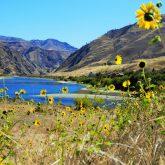 Where Snake River Meets Grande Ronde River