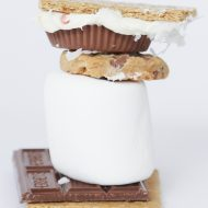 Gourmet S'mores Oozing with Perfection
