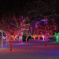 Locomotive Park in Lights
