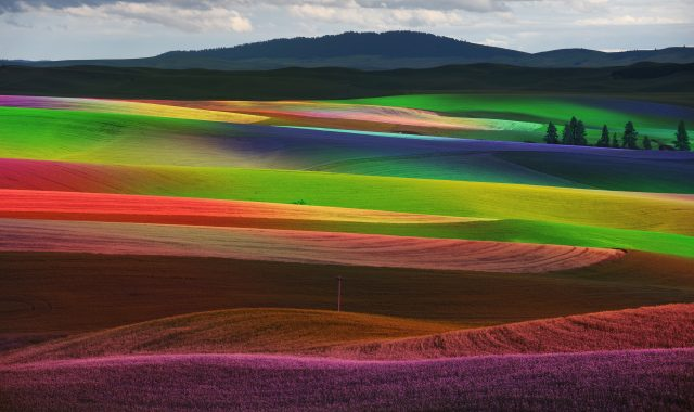 Mohr shades on the Palouse: Colfax via NYC artist paints with photography