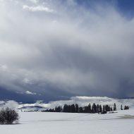 February storm on Camas Prairie