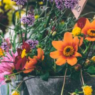 Last ditch summer fun: U-pick flowers save summer in a vase