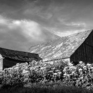 Barns of the Palouse: Photographic exhibit features regional historic agricultural structures