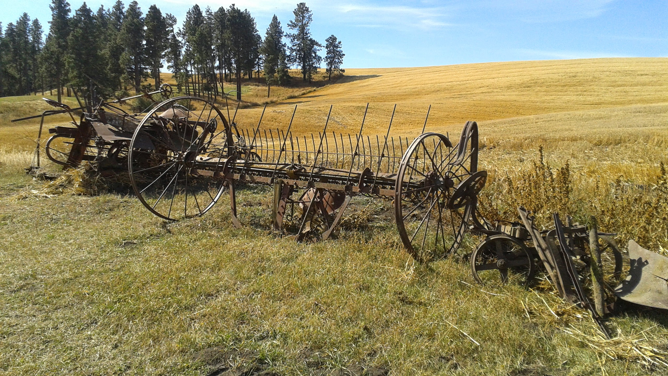 Cemetery of old farm equipment | Inland 360
