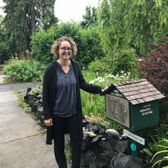 Little library stewards see patterns and find surprises