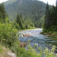 Upper North Fork of the Clearwater River