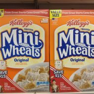 How in the Frosted Mini-Wheats did it come to this?