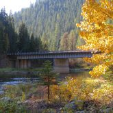 Fall Color Near Bungalow Bridge