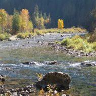 A Kelly Creek Autumn, Too