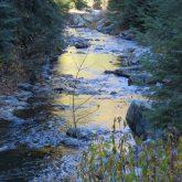 Mid-Morning near Rosebud Creek
