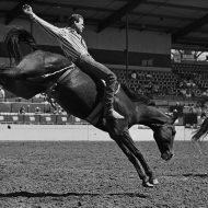 Bustin' Broncs & stereotypes: Moscow events, exhibit focus on gay rodeo circuit
